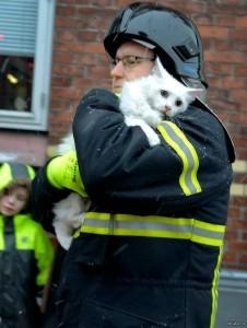 пожарный спас котика