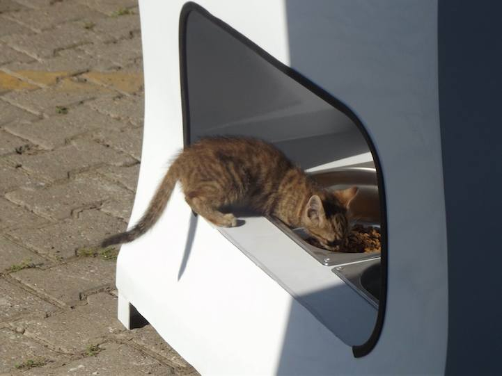 автомат для питания бездомных животных Стамбул