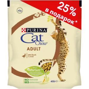 Премиум корма для кошек: польза и краткий обзор