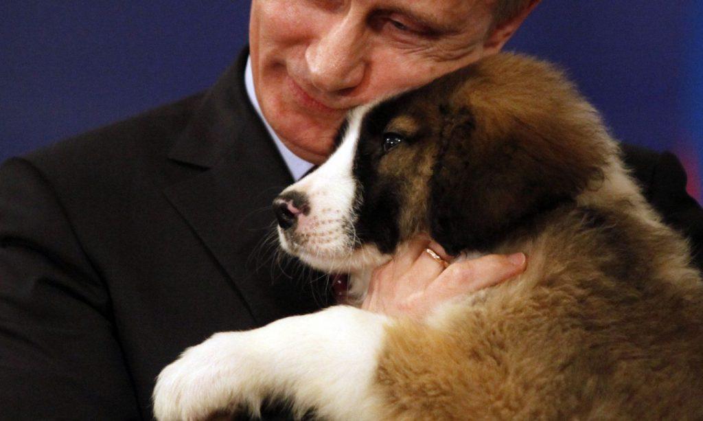 Баффи - болгарская овчарка Путина