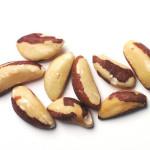 Бразильский орех для хомяка